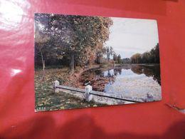 à Identifier - étang - Paysage De France - Mélancolie Et Douceur De L'automne - Postcards