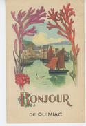 """QUIMIAC - Jolie Carte Fantaisie Algues Et Bateaux """" Bonjour De QUIMIAC """" - France"""