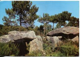 N°39 R -cpsm Dolmens De Gromelech - Dolmen & Menhirs