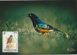 Côte D'Ivoire. Ivory Coast 1980. Choucador Superbe. Superb Starling .Carte-maximum. Rare - Perroquets & Tropicaux