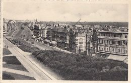 Postkaart - Carte Postale - WENDUINE Panorama (B247) - Wenduine