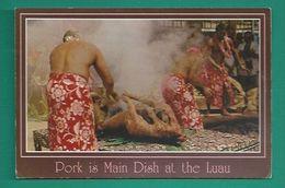 OCEANIE - HAWAII - HAWAÏ - LUAU PIG - PORK IS MAIN DISH AT THE LAU - Postkaarten