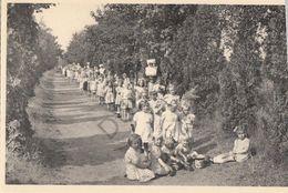 Postkaart - Carte Postale - RAVELS - OLV Van De Kempen - Kinderlust    (B290) - Ravels
