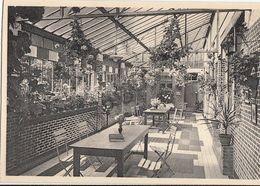Postkaart - Carte Postale - RAVELS - OLV Van De Kempen - Opwekkende Rustplaats    (B284) - Ravels