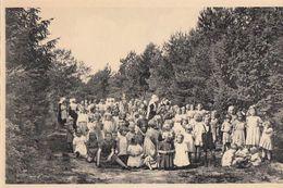Postkaart - Carte Postale - RAVELS - OLV Van De Kempen - Park    (B196) - Ravels