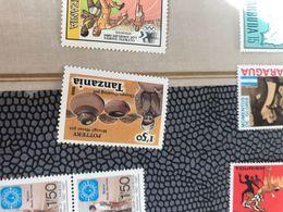 TANZANIA ARTE 1 VALORE - Africa (Other)