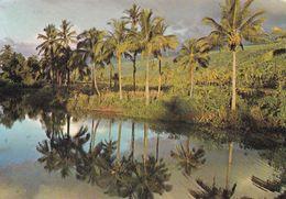 Ile De La Réunion, Paysage Typique Des Environs De Saint Paul - Reunion