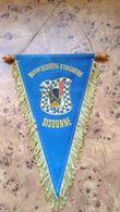 FANION 94° RI / 94° REGIMENT D'INFANTERIE - Drapeaux