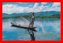 CPSM/gf SHAN STATE (Birmanie)  Rower At Inle Lake, Pêcheur En Barque...D340 - Myanmar (Birma)