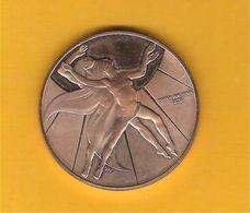 Médaille Des Nations Unies United Nations Pour La Jeunesse Dans La Paix 1970  UNC Dans Son écrin - Tokens & Medals