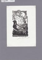 Duif - Pigeon - Taube - Bookplates