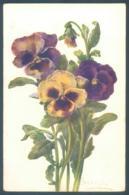 Lot De 21 Cartes Fleur Pensée Flowers Pansy Flower - Zonder Classificatie