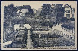 Oeuvre Royale Du Grand Air Pour Petits Colonie De La Hulpe Jardins Potagers - La Hulpe