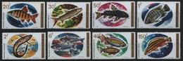 Ruanda 1973 - Mi-Nr. 577-584 A ** - MNH - Fische / Fish - 1970-79: Ongebruikt