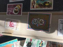 PARAGUAY STEMMI 1 VALORE - Postzegels