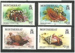 Montserrat 1984 Marine Animals And Plants., Mi 557-560  MNH(**) - Montserrat
