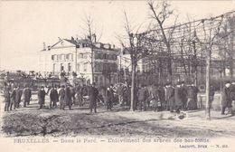 Brussel, Bruxelles, Dans Le Parc, Enlèvement Des Arbres Des Bas Fonds (pk69709) - Bossen, Parken, Tuinen