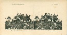 LA GRANDE GUERRE - MAROCAINS A L'ILRY-LE-FRANCOIS - Stereoscope Cards