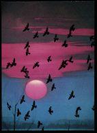 Abendstimmung Mit Taunenschwarm  -  DJH Ca. 1983   (13013) - Oiseaux