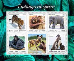 Sierra Leone 2020 Fauna ,Endangered Species , Monkey , Penguin  ,elephant ,orangutan  S202003 - Sierra Leone (1961-...)