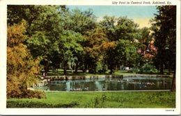 Kentucky Ashland Central Park Lily Pool Curteich - Etats-Unis