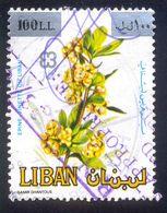 LEBANON 100L USED STAMP 57913 EPINE VINETTE PLANT - Libanon