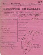 MARGON EDMOND PERRIOT ELEVEUR A CHAMPEAUX PETIT BULLETIN DE SAILLIE FAITE PAR L ETALON PHOEBUS ANNEE 1902 - France