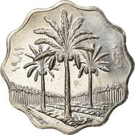 Monnaie, Iraq, 5 Fils, 1981, SPL+, Stainless Steel, KM:125a - Irak