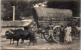 CEYLAN - Native Bullock Cart - Sri Lanka (Ceylon)