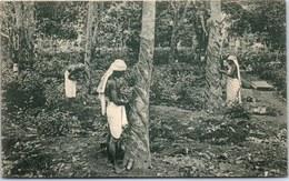 CEYLAN - Tapping Rubber Trees - Sri Lanka (Ceylon)