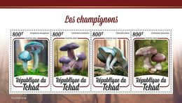 Chad 2020 Mushrooms S202003 - Chad (1960-...)