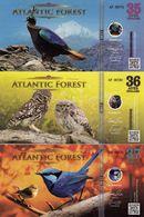 Atlantic Forest Lot 35, 36 Et 37 Aves UNC Janvier 2017 - Ficción & Especímenes