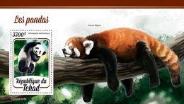 Chad 2020  Fauna Pandas  S202003 - Chad (1960-...)