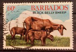 Barbados S.G. 695 Gestempelt Used (9646) - Barbados (1966-...)