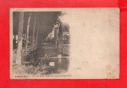 Aubigny Sur Nère : Les Mails Et Anciennes Fortifications Vers 1900 - Aubigny Sur Nere