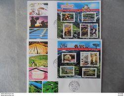 FDC (2) Grand Format France 2006 : La France à Vivre (série Complète 2 BF) - FDC