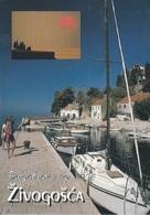 Postcard RA013135 - Croatia Hrvatska Zivogosce (Svogoschia) - Croatia
