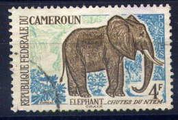 CAMEROUN - 344° - ELEPHANT - Cameroun (1960-...)