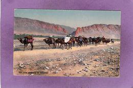 SYRIE  Une Caravane De Nomades  LEHNERT & LANDROCK N° 914 - Syria