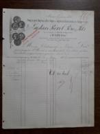 L15/124 Ancienne Facture. St Uze. Porcelaine à Feu , Terre Cuite. Gustave Revol . 1886 - 1800 – 1899