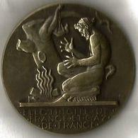 Medaille Bronze Electricité Et Gaz De France Signée H Dropsy - Profesionales / De Sociedad
