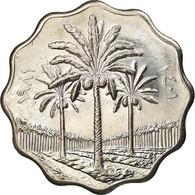 Monnaie, Iraq, 5 Fils, 1981, SPL+, Stainless Steel, KM:125a - Iraq