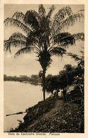 Manaos, Vista Da Cachoeira Grande - Manaus