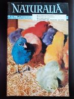 REVUE NATURALIA N° 55 Avril 1958 Animaux De La Prehistoire Bouquetin Reserve De Camargue Jardin Japonais - Animals