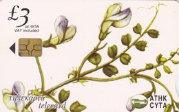 Cyprus, CYP-C-143, 0206CY, Wild Flowers Of Cyprus, Vicia Cypria, 2 Scans.   GEM5 (Black) - Cyprus