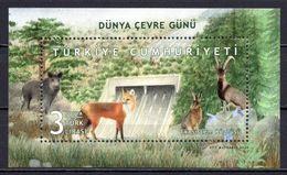 2020 TURKEY WORLD ENVIRONMENT DAY GOAT RABBIT PIG FOX SOUVENIR SHEET MNH ** - Blocks & Sheetlets