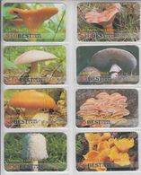 MUSHROOM SET OF 16 PHONE CARDS - Lebensmittel