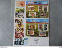 FDC (2) Grand Format France 2004 : La France à Vivre (série Complète 2 BF) - FDC
