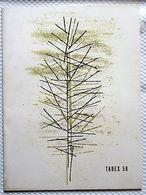 Expo 58 - TABEX 58 - Plaquette éditée Par FEDETAB - 20 Pages - 310 X 230 Mm - Tabacs, Cigarettes - Vecchi Documenti