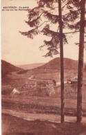 88 - Vosges - BRUYERES - Un Point De Vue Sur Les Montagnes - Bruyeres
